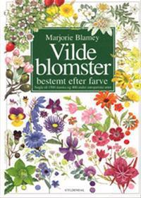 Vilde blomster bestemt efter farve