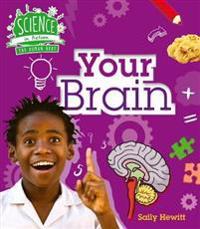 Human Body: Your Brain