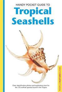Handy Pocket Guide to Tropical Seashells