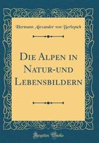 Die Alpen, in Natur-Und Lebensbildern (Classic Reprint)