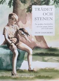 Trädet och stenen : en pojkens berättelse om Gud, pappa, flickor och en del annat