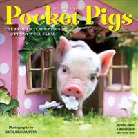 2019 Pocket Pigs Mini Wall Calendar