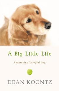 Big Little Life