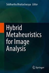 Hybrid Metaheuristics for Image Analysis