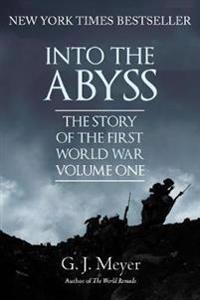 Into the abyss - the story of the first world war, volume one