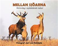 Mellan sjöarna : strövtåg i sydskånsk natur - Jarl von Schéele pdf epub