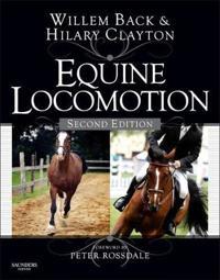 Equine Locomotion