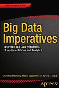 Big Data Imperatives