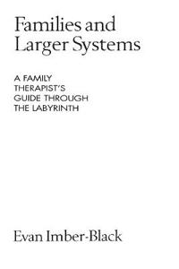 Families and Larger Systems: A Family Therapist's Guide Through the Labyrinth