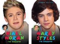 Harry Styles/Niall Horan