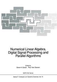 Numerical Linear Algebra, Digital Signal Processing and Parallel Algorithms