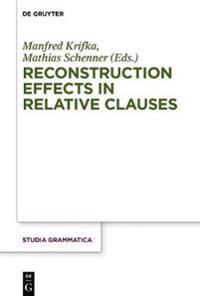 Reconstruction Effects in Relative Clauses