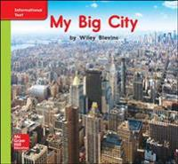 World of Wonders Patterned Book # 5 My Big City