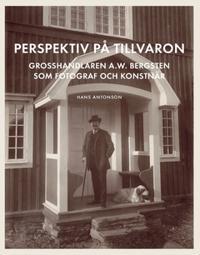 Perspektiv på tillvaron : Grosshandlaren A.W. Bergsten som fotograf och konstnär - Hans Antonson pdf epub
