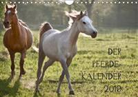 Pferdekalender (Wandkalender 2019 DIN A4 quer)