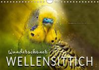 Wundersch?ner Wellensittich (Wandkalender 2019 DIN A4 quer)