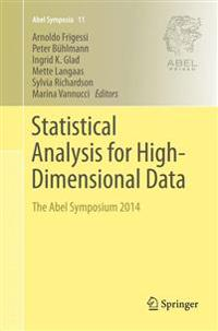 Statistical Analysis for High-dimensional Data