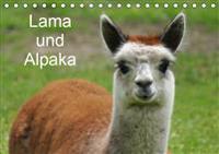 Lama und Alpaka (Tischkalender 2019 DIN A5 quer)