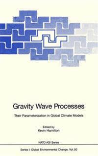 Gravity Wave Processes