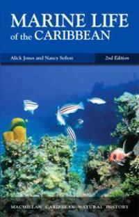 Marine Life of the Caribbean