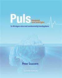 Puls - Peter Scazzero pdf epub