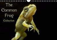 The Common Frog Collection 2019