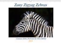 Zany Zigzag Zebras 2019