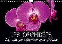 Les Orchidees - La musique visuelle des fleurs 2019