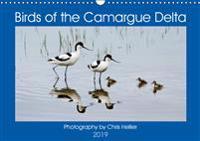 Birds of the Camargue Delta 2019
