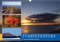 Fuerteventura, l'ile du printemps eternel 2019