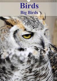 Birds Big Birds 2019