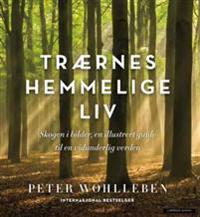 Trærnes hemmelige liv; skogen i bilder - Peter Wohlleben | Inprintwriters.org