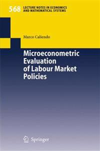 Microeconometric Evaluation of Labour Market Policies