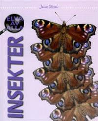 Elva av alla Insekter - Årskurs 3 - 6, Sfi, Sv2