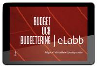 Budget och budgetering eLabb, abonnemang 6 mån