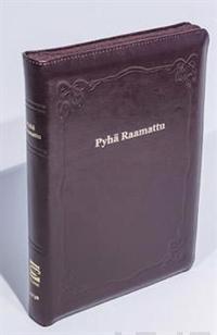 Raamattu (johdannoin, iso koko, iso teksti, v.punainen, vk R46, nahkakansi)