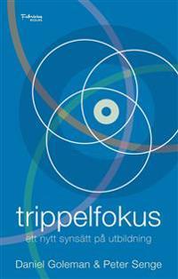 Trippelfokus : ett nytt synsätt på utbildning