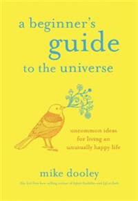 A Beginner's Guide to the Universe