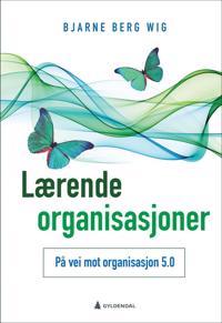 Lærende organisasjoner - Bjarne Berg Wig pdf epub