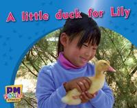 A little duck for Lily