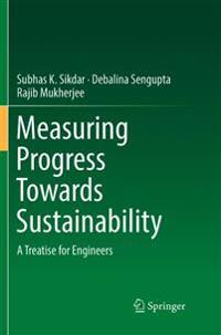 Measuring Progress Towards Sustainability