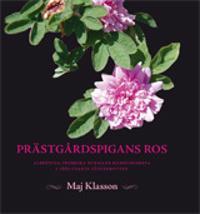 Prästgårdspigans ros: Albertina Fredrika Burmans bildningsresa genom 1860-t