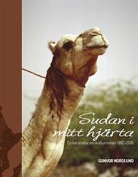 Sudan i mitt hjärta : en berättelse om kulturmöten 1982-2010
