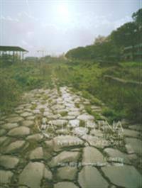 Via Tiburtina Space, Movement & Artefacts in the Urban Landscape