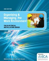EIS: Organising and Managing the Work Environment