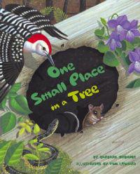 One Small Place in a Tree