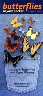 Butterflies in Your Pocket