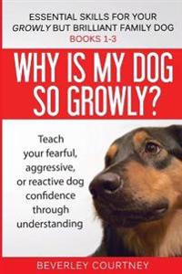Essential Skills for Your Growly But Brilliant Family Dog