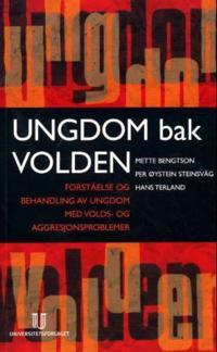 Ungdom bak volden - Mette Bengtson, Per Øystein Steinsvåg, Hans Terland pdf epub