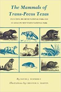 Mammals of Trans-Pecos Texas